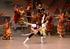 東京バレエ団〈子どものためのバレエ「ドン・キホーテの夢」〉